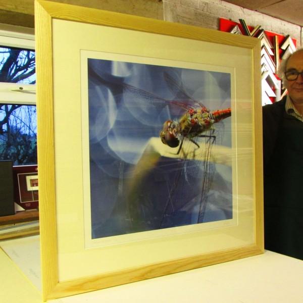 """Nigel Pugh - """"Dragonfly"""" frame"""